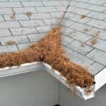 Get Gutter Helmet and Avoid Cleaning Your Gutters This Fall