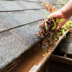 Planning to Clean Your Gutters? Think Ahead